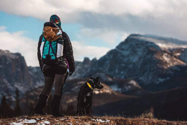 Cani perfetti per fare trekking