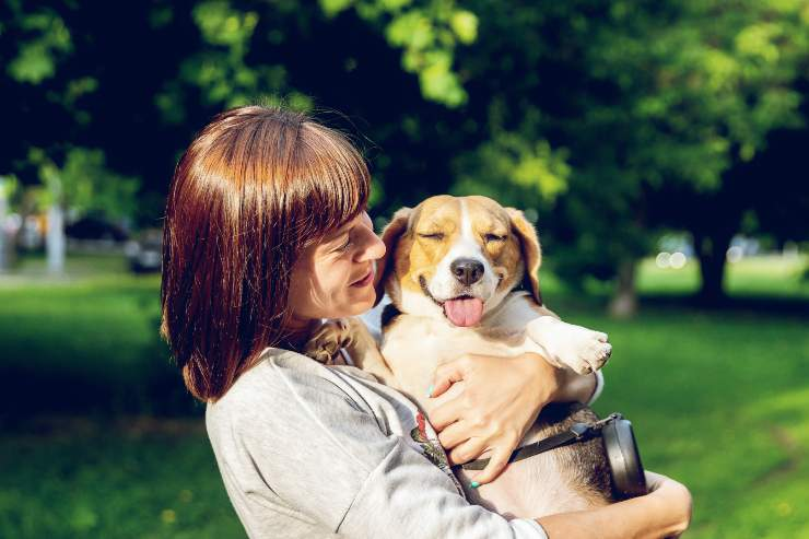 Razze canine perfette per le persone divertenti