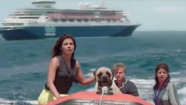 cane amore in alto mare