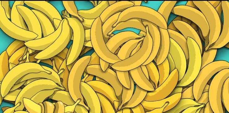 Test visivo trova il serpente tra le banane