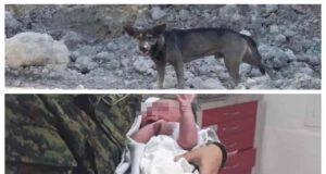 Blacky e il neonato che ha tratto in salvo (Screen Instagram)