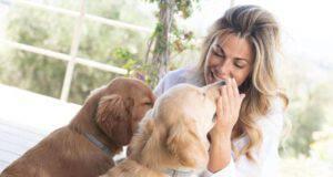 Vanessa Incontrada cani