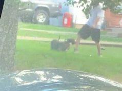 Arrestato dalla polizia per averlo preso a calci in un parco (Screen Video)