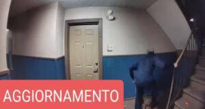 Uomo picchia selvaggiamente un cane: trovato grazie ad una App