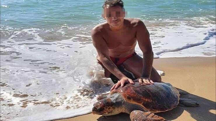 Carabiniere salva tartaruga (Screen Facebook)