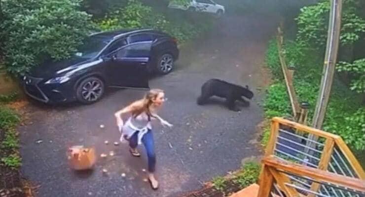 Corre via urlando dall'orso (Screen video)