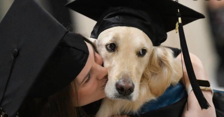 Il cane con la laurea speciale