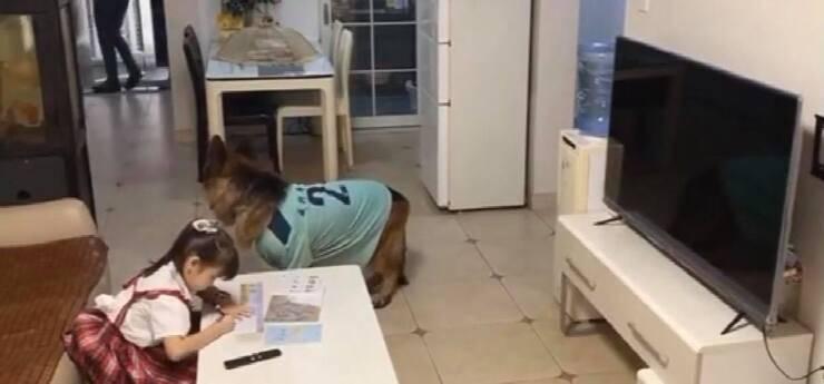La bambina fa i compiti al ritorno del papà (Screen video)
