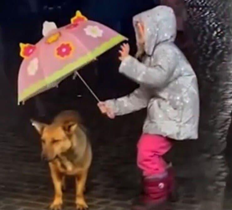 La bimba e il cucciolo sotto la pioggia (Screen video)