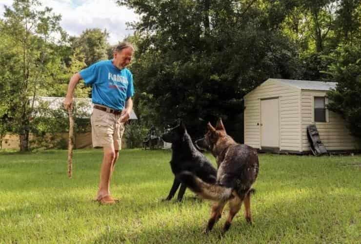 Signor Weimann e i suoi cuccioli (Screen Facebook)