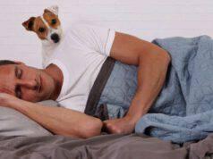 perché il cane guarda quando dormo