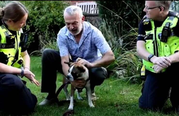 Cane rapito durante un furto ritrovato nel guardino di una donna (Screen Video